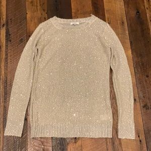 BB Dakota sequin sweater